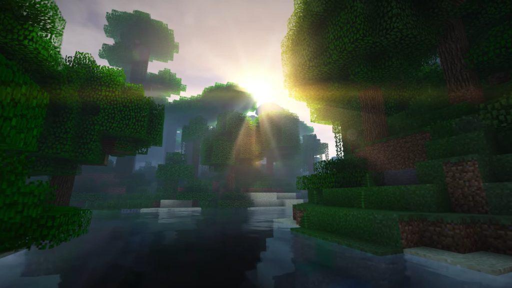 the sun on the treetops