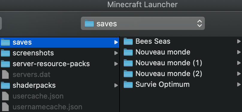 install map minecraft saves