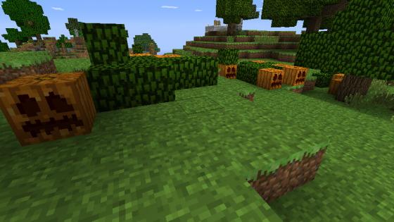 forest generation of pumpkins world edit
